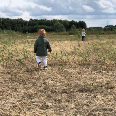 P in het veld